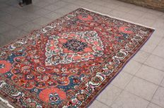 Beautiful & Original Iran Persian Bachtiar hand knotted 166 x 257 cm with certificate of authenticity