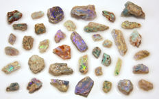 Opalized plant fossils  - various sizes - 115ct - 23gm