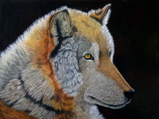 Gary Wakeham- She Wolf (Mexican breed)