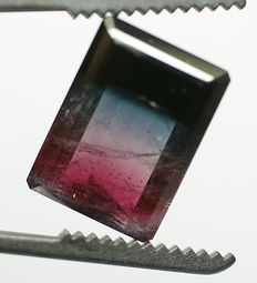 Tourmaline bi-coloured (greenish blue/ pinkish red) - 30.85 ct