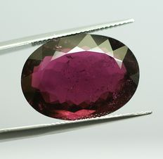 Tourmaline- purple, 19,25 ct