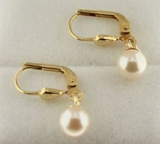 Yellow gold 14 kt earrings set with a pearl of 6 mm