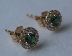 Gold earrings of 14 kt inlaid with emerald – Length: