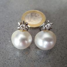 18 kt white gold – Earrings with Japanese pearls and diamonds 0.25 ct