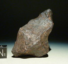 Iron Meteorite - Canyon Diablo - natural patina   66,38g - 55 x 33 x 20 mm