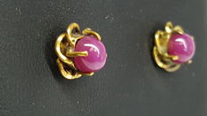 Beautiful 14 kt yellow gold earrings set with star rubies.