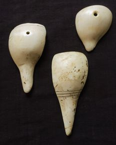 Shells from Nagaland – 3 pieces