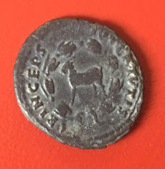 Roman Empire - AR denarius, Domitian (Caesar, 69 to 81 A.D.)