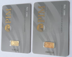 2 pieces Nadir PIM gold bars - each 0.5g fine gold - purity 999.9/1000 24 carat gold bars - 1 gram Gold bar Bullion in cheque card format - blistered- LBMA certified
