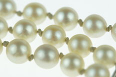 Three-row, Akoya pearl bracelet, with a14 kt gold (slide) clasp, length 19.5 cm.