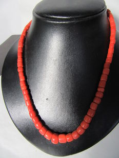Precious coral necklace with 14 kt gold clasp, around 1900