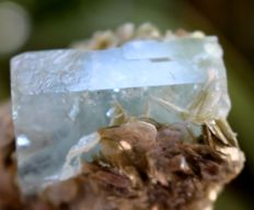 Terminated Aquamarine Crystal on Muscovite Mica - 40 x 78 x 60 mm - 177gm