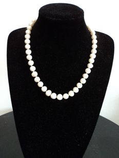 Cultured freshwater pearl necklace with large 925 silver clasp. Length: 52 cm