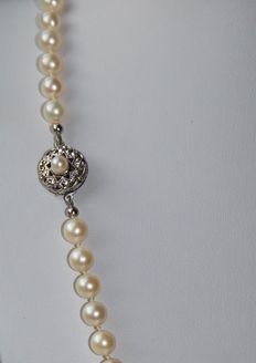 Pearl necklace with 6,6 mm round salt water pearls from Japanese sea with white gold clasp