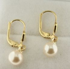 Yellow gold 14 kt earrings set with a 6 mm pearl