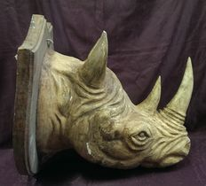 Rhino head in painted wood - Cuneo, Italy - late 19th century