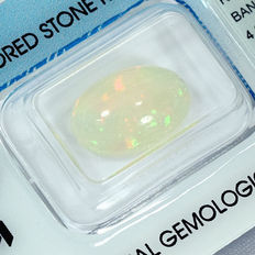 Opal – 4.60 ct No Reserve Price