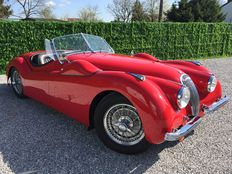 Jaguar - XK120 Roadster - 1952