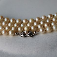 Long necklace ca. 72,5cm with Japanese salt water pearls and 14kt. White gold clasp with pearl.