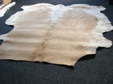 Beautiful brown and white cowhide from Europe -1995