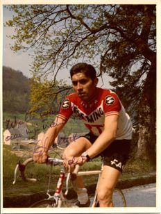 Eddie Merckx best cyclist of all times large Photo with original signature
