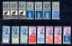 Italy 1924/1925 - Collection lots of publicity stamp - SASS#: 1-5, 7, 11, 12, 15, 16