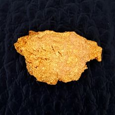 Gold nugget - 3.1 Gg - 15.5 ct