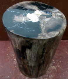Side table made of petrified wood from trunk - 40.5 cm - 32 kg.