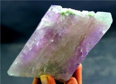 Natural Bi Color Kunzite Crystal with Tourmaline Crystals  - 120 x 61 x 27 mm - 370 Gram