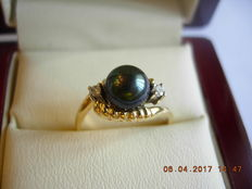 Ring in 14kt. yellw gold with plum-black pearl fro Tahiti and diamond