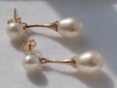 Gold earrings, 14 kt, with pearl,  size: