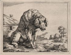 Paulus Potter (1625-1654) -  A sow in a farmyard,  a farm-house in background - Etched by Marcus De Bye ( 1639-1688 ) -  ca 1659