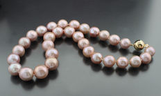 Extra large cultivated pearl necklace, 11.5 to 14.0 mm pink, 585 yellow gold - no reserve
