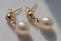 Gold earrings, 14 kt, inlaid with pearl and zirconia, size 4 x15 mm.