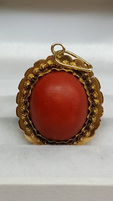 14 kt yellow gold pendant set with precious coral