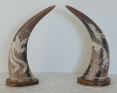 Carved Ox Buffalo Horns - Dragons and Phoenix Birds - Thailand - second half 20th century