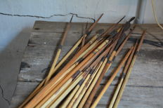 Lot with 24 tribal ARROWS - Former Belgian Congo