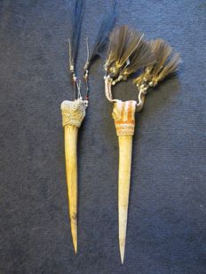 Two daggers of cassowary bone - ASMAT  West Papua