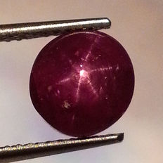 Star Ruby - 3.45 ct - No Reserve Price