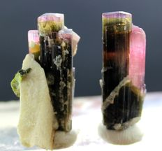 Multi Color Tourmaline Natural Crystals Specimens Pair  - 102 cts (2)