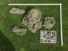 a large quantity of pyrite crystals -  16kg