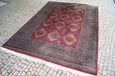 LIKE NEW  KASCHMIR PAKISTAN RUG -hand knotted- 295 x 195 cm.