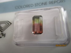 Two-tone tourmaline - 1.54 ct