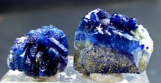 Damage Free Deep Blue Fluorescent Afghanite with Golden Pyrite Specimens Pair - 60 Gam (2)