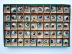 50 glass eyes - ocular prosthetics.