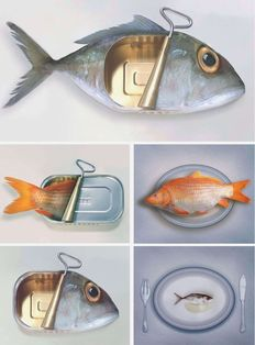 Art Grafts - Surreal Fishions (Folio)