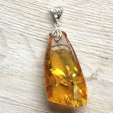 Silver and Amber pendant with inclusion,  light honey colour with clearly visible fly, 8.9 grams