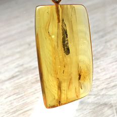 Gold plated Amber pendant with inclusion, light honey colour with clearly visible fly,  no reserve