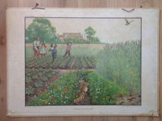 "More than 100 year old original school poster by Cornelis Jetses from the series ""full life"", 4th series arable land with the title ""June morning in arable lands"""