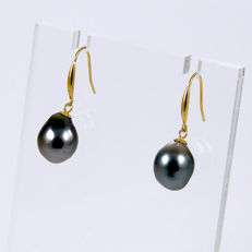 18 kt yellow gold earrings with baroque pearls from Tahiti